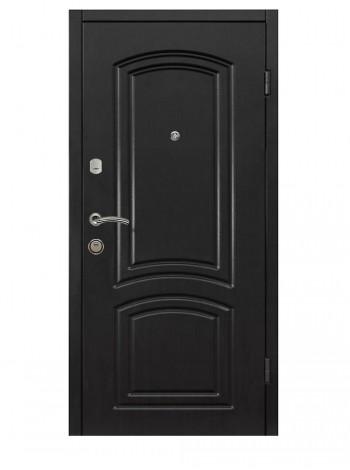 Входная  дверь САВАННА 2 (ПОД ЗАКАЗ)